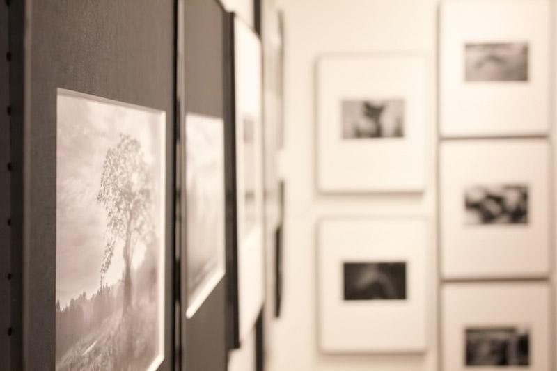おやじの会写真展 『記憶の中からXlll』