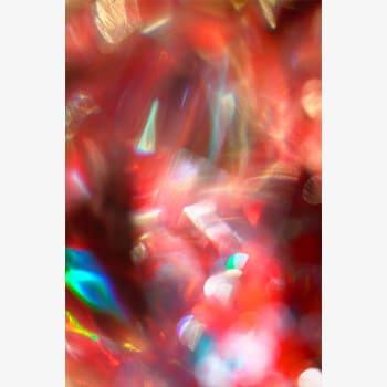 【2/2金】林 優子 展ギャラリートーク