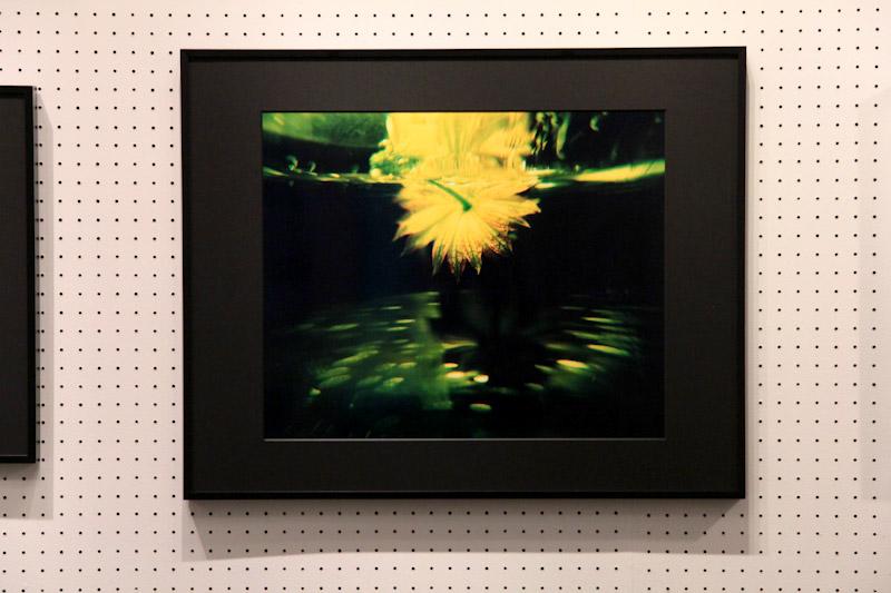 マサ子 写真展 「バックミラーからの警鐘」