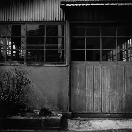 フィルムで撮ったらレンズで焼く会 展 vol.5「好きやねん!!」