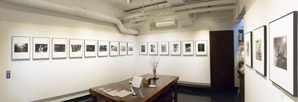 第20回 北浜白黒写真俱楽部 写真展「SAKURA」