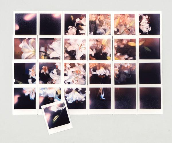 大和田良ゼミ 写真展「AGGREGATE」