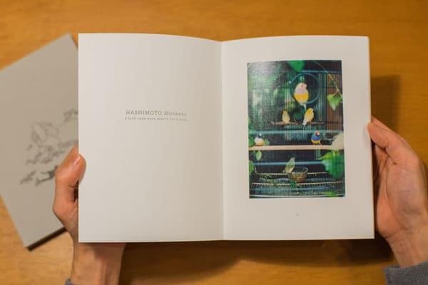 「LITMUS STORY Issue.02」橋本大和