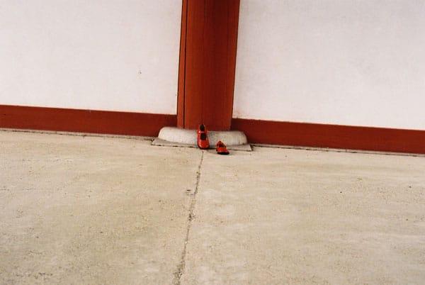 8/20(火)〜8/25(日)育緒フィルム写真ゼミ 誰も修了できなかったので中間発表展「全員落第。」 | ソラ...
