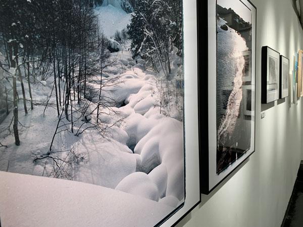 自然をテーマにした写真展 「nature」